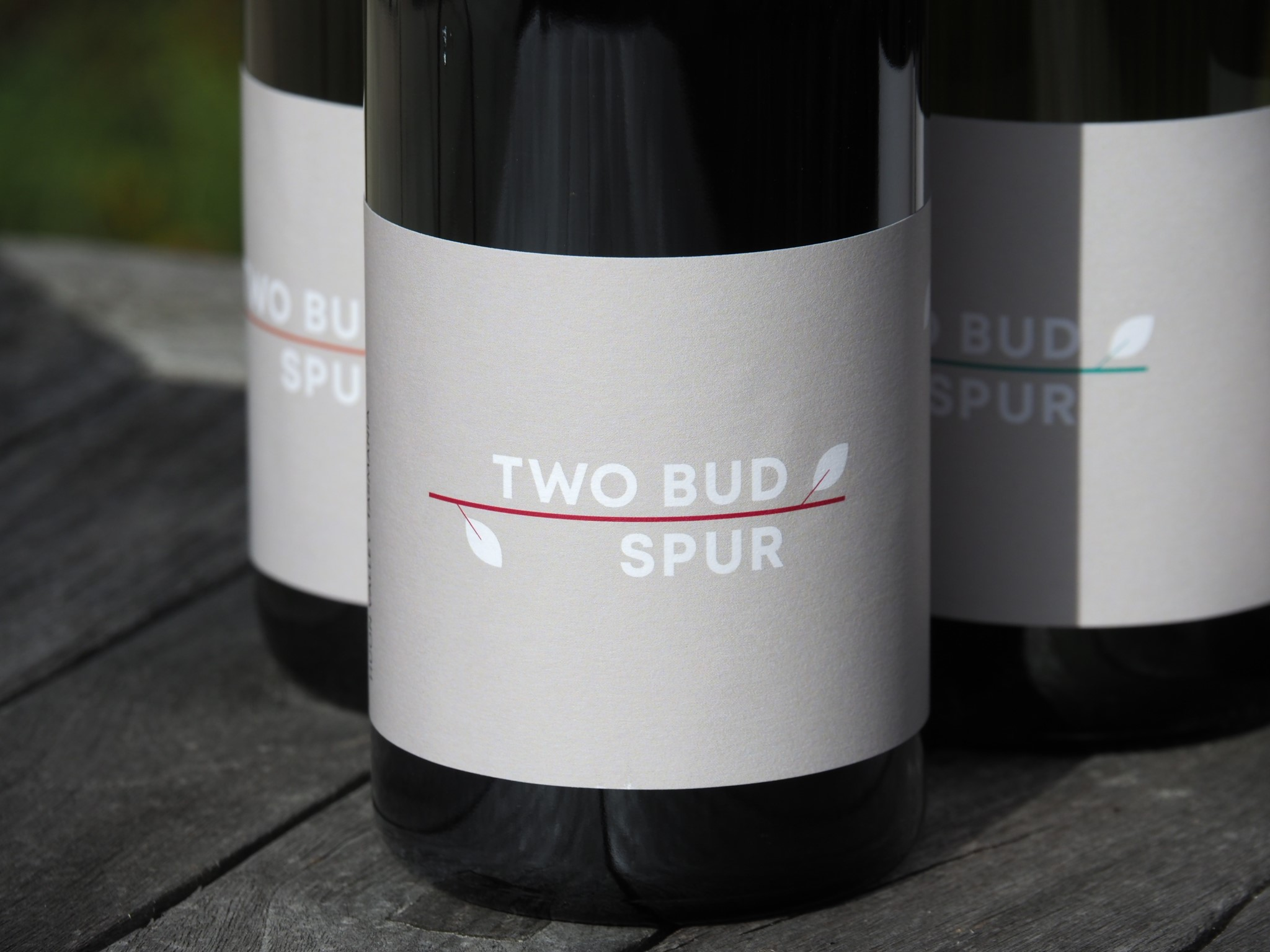 huon-valley-winery-region-two-bud-spur-vineyard-tasmanian-wine